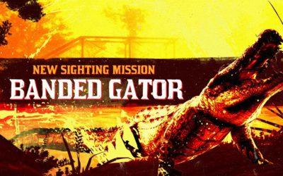 L'alligator à bandes légendaire et de nouveaux vêtements sont dorénavant disponibles dans Red Dead Online