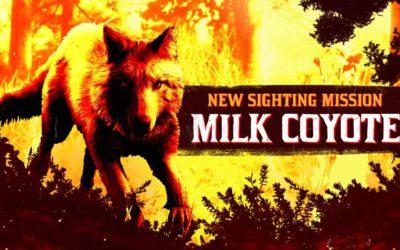 Le coyote Laiteux légendaire fait sont apparition dans Red Dead Online
