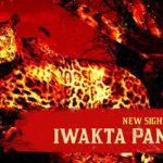 Red Dead Online, la Panthère Iwakta Légendaire est disponible